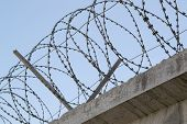 picture of barbed wire fence  - Concrete fence with a barbed wire against the sky  - JPG