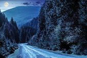 foto of conifers  - asphalt road going in mountains and passes through the conifer forest at night in full moon light - JPG