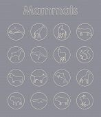 pic of aurochs  - It is a set of mammals simple web icons - JPG