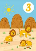 foto of mountain lion  - Three cute lions - JPG