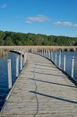 stock photo of cattail  - wood lake park boardwalk crossing lake and cattail marsh bordered by forest in richfield minnesota - JPG