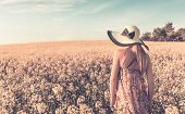 picture of rape  - Retro style photo of girl on yellow rape field - JPG