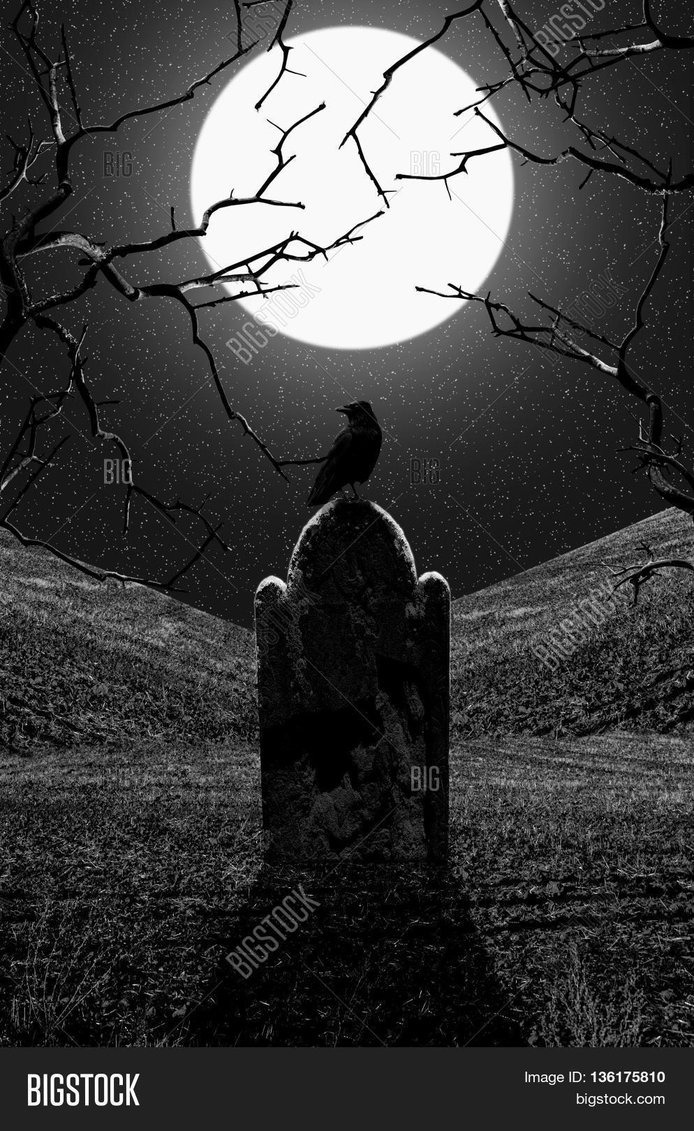 Raven on gravestone at midnight. Graveyard at night ...