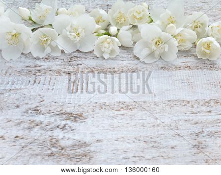 Sweet mock-orange flowers on the rustic white painted background