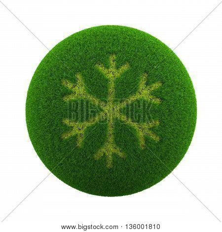 Grass Sphere Winter Icon