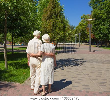 The back view of old couple in the summer on a walk in park