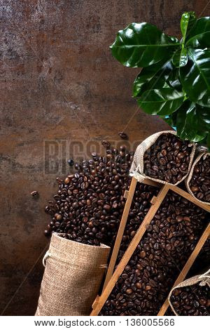 Jute bags and wooden containers filled with cofee beans on the rust background. Low light. Coffee plant.