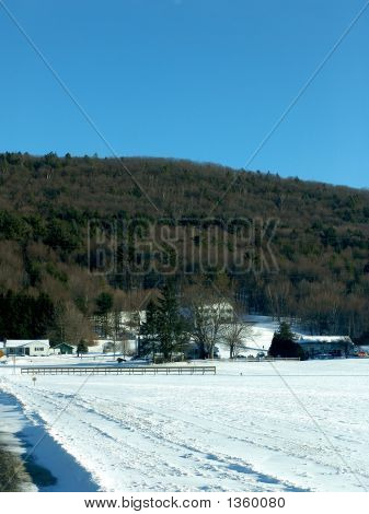 Roadside Snow Covered Farmland