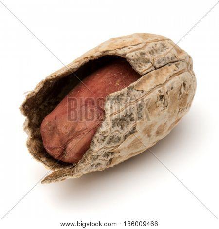 Opened peanut or groundnut pod isolated on white background close up
