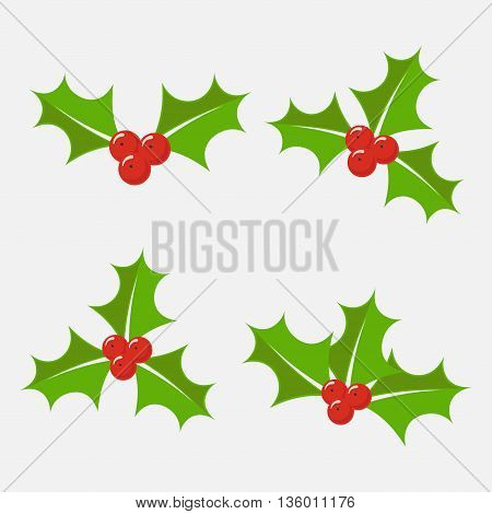 Christmas holly berry vector set isolated from the background. Decorative twigs bunches of holly with red berries. Icons Christmas holly leaves in a flat style.