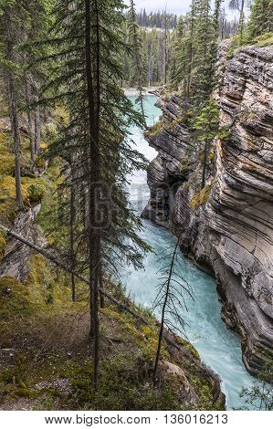Waterfall In The Canadian Rocky Mountains- Jasper National Park