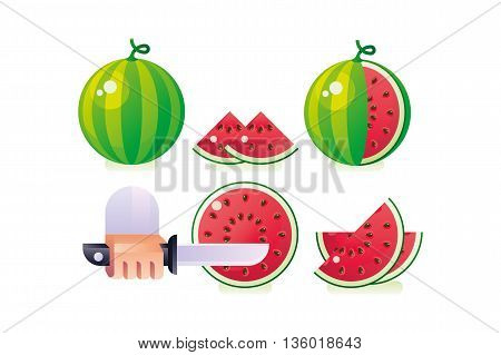 Composition of Watermelon set on white background. Fresh and juicy watermelons and slices. Vector illustration.