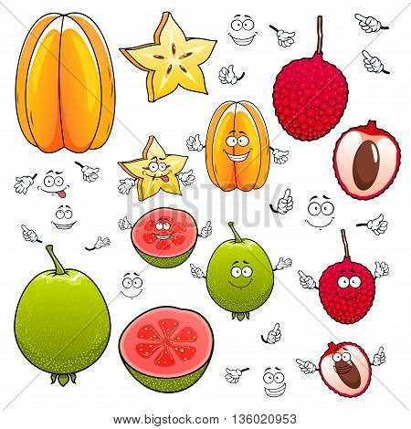 Smiling tropical dessert star fruit, lychee and guava fruits cartoon characters with delicious juicy slices and smiling faces. Use as exotic cocktail recipe or kitchen interior design