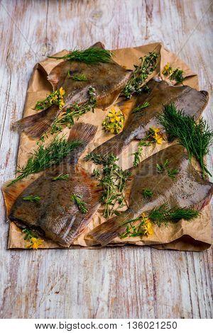 Raw Fish Flounder In Fresh Herbs