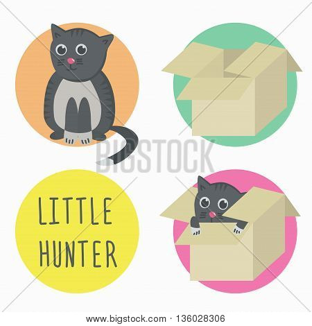 The cat is a little hunter with box. Cat in box. Vector illustration.