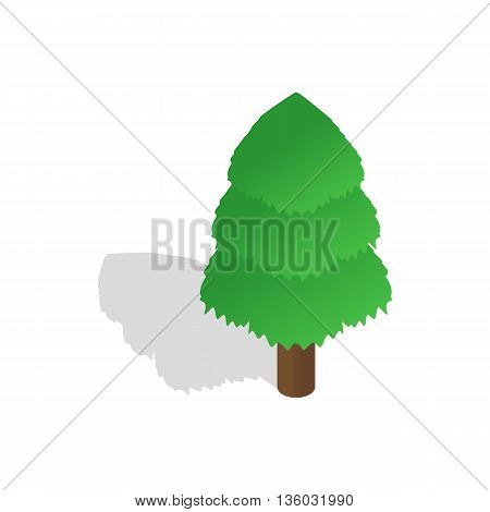 Spruce icon in isometric 3d style isolated on white background. Nature symbol