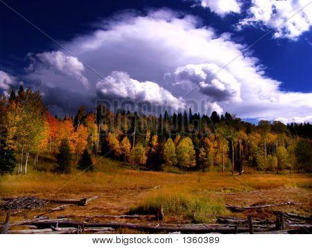 Fall Storm