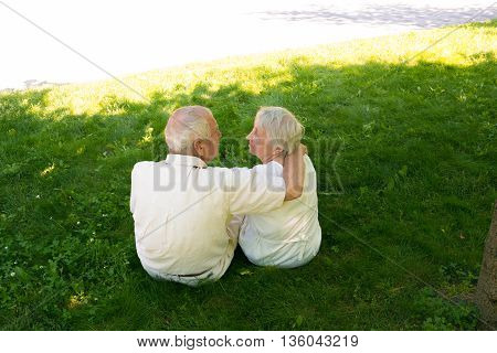 The back view of happy old couple in the summer on a walk in park