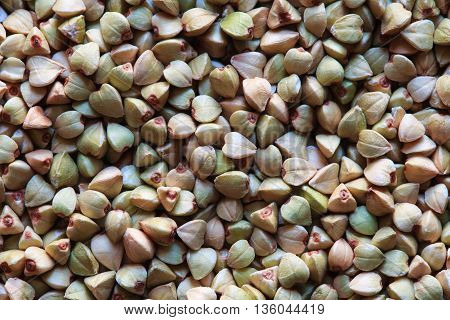 green buckwheat grains, raw buckwheat photo, buckwheat grains, buckwheat background, dry buckwheat, organic buckwheat, green buckwheat