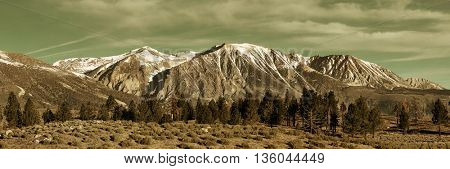 Grassland and snow mountain panorama with cloud in Yosemite.