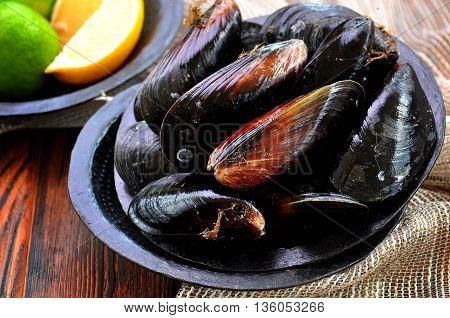 Fresh wild Black Sea mussels on table