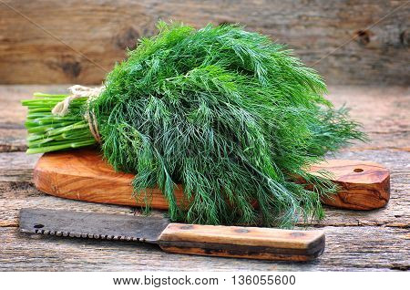 Bunch of fresh organic dill on a wooden table