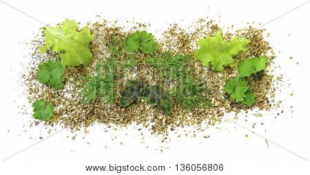 fresh spices basil dill parsley posted in the sea salt isolated on white background