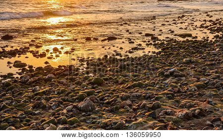 Gravel beach aglow with the setting sun. Horizontal.