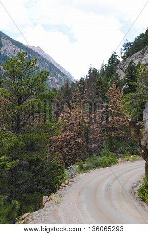 A dirt road going down a mountain.