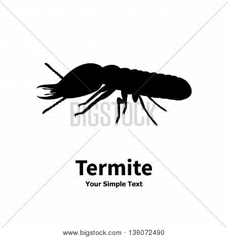 Vector illustration of a silhouette of a termite on an isolated white background. Termite side view profile. The insect lives in the house.