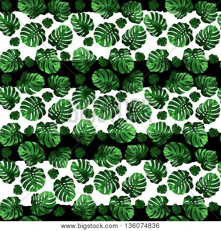 Seamless pattern of green leaves monstera on the striped background. Tropical image.