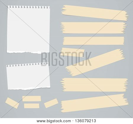Ripped white blank notebook paper sheets, masking tapes are stuck on gray background.