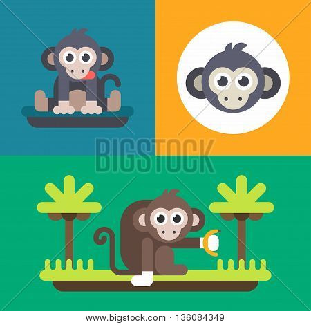 Animals. A set of three illustrations of monkey. Bright monkey primate funny face. Colored flat vector illustration.