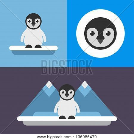 Animals. A set of three illustrations in blue colors of cute pinguin. Iceberg ice floe cold little pinguin. Colored flat vector illustration.