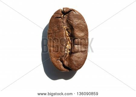 Coffee Bean With Sharp Shadow, Isolated Macro.