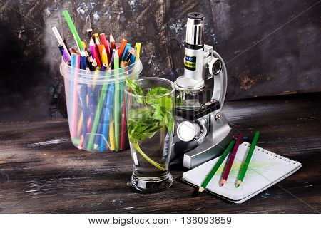 children's microscope in still life table leaves plant foliage, biology, pencils notebook study pencils, note, notebook