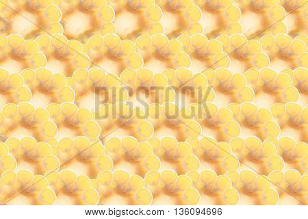 Slices of corn cobs. Corn background. Pattern. Food background.
