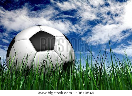 football or soccer ball on the grass over a blue sky in the background - 3d illustration