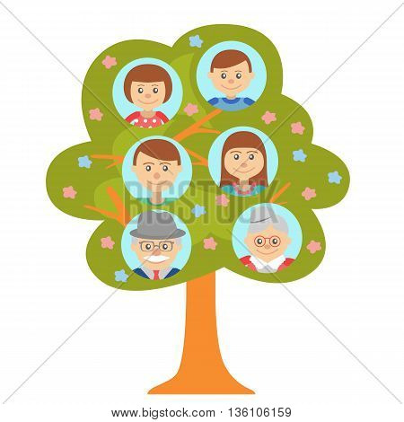 Cartoon generation family tree illustaration isolated on white background. Family tree in flat style grandparents parents and children.