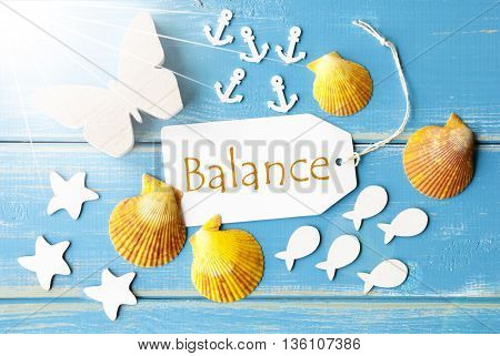 Flat Lay View Of Label With English Text Balance. Sunny Summer Greeting Card. Butterfly, Shells And Fishes On Blue Wooden Background