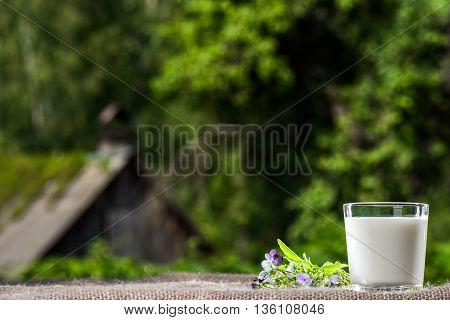 Milk In Summer