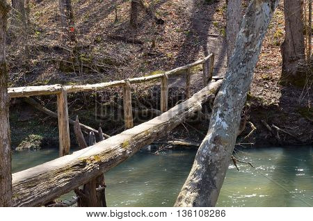 Wooden walking bridge made out of a log.  Bridge over water connects hiking trail through a hardwood forest.