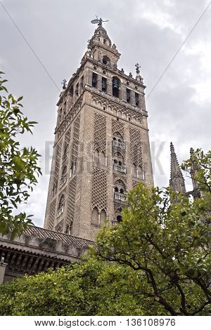 The Giralda the bell tower of the Seville Cathedral in Seville Spain