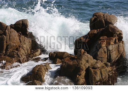 This is an image of the rocky coast of Pacific Grove, California, USA.