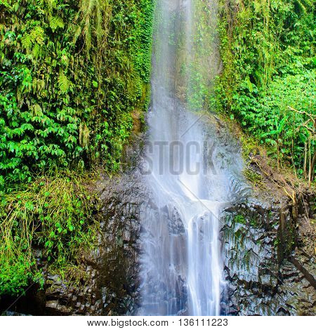 Tropical waterfall cascading down a rock shelf surrounded by dense greenery