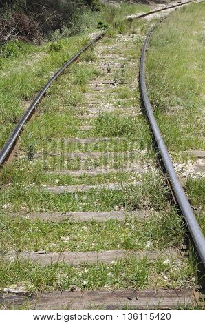 An old railroad track with weeds and grass.