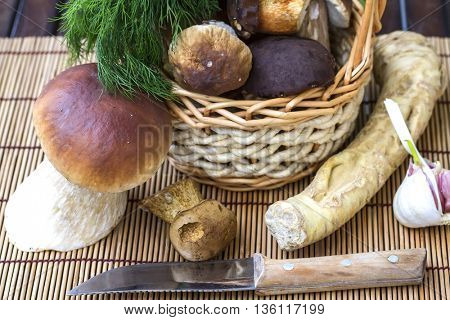 Still life with white mushrooms. Ingredients for preserving white mushrooms