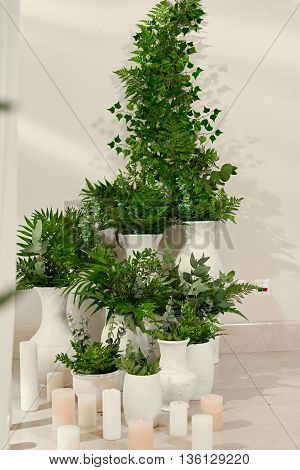 Decorations for the wedding ceremony indoor. green flowers and candles