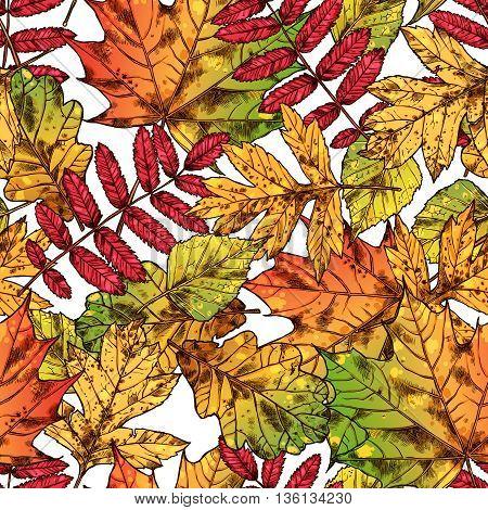 Autumn Leaves Seamless Pattern, Hand Drawn Autumn Background