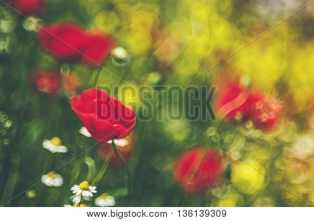 beautiful blurred background